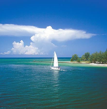 Anna Maria Island, FL: coquina beech