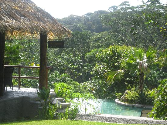 Sarapiquis Rainforest Lodge 사진