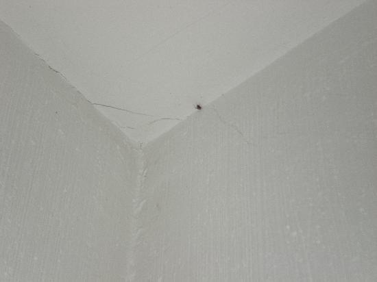 Hospederia Real del Jucar: Un observador, no invitado en el cuarto