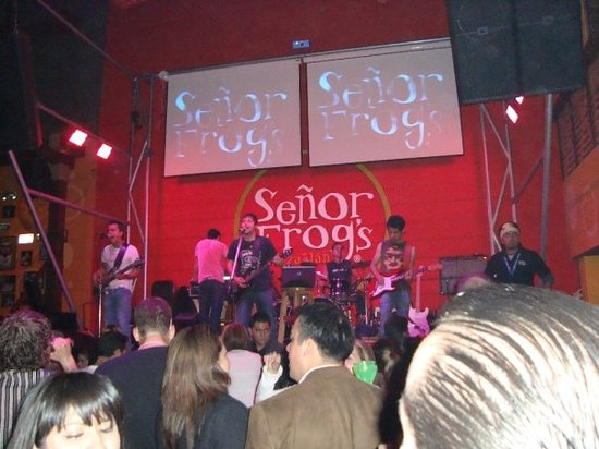 Senor Frogs: Live Spanish Band