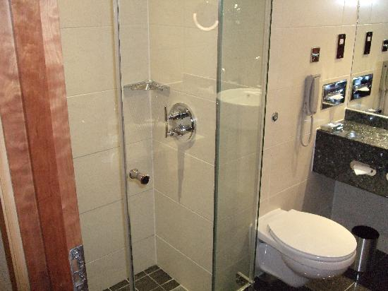Sofitel London Heathrow: Walk in shower