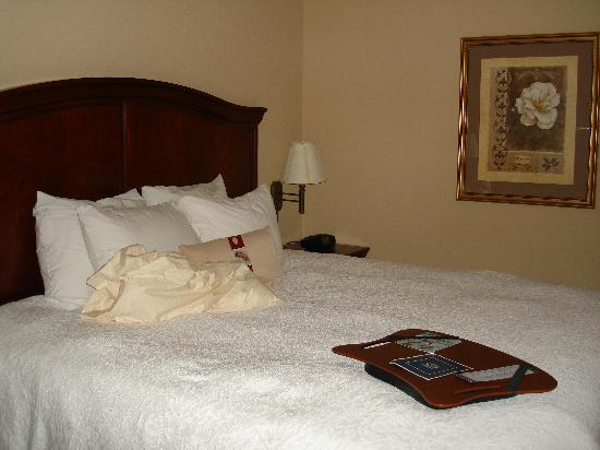 Hampton Inn Dunn: The Bed