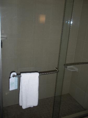 DoubleTree by Hilton Austin - University Area: Bathroom Shower