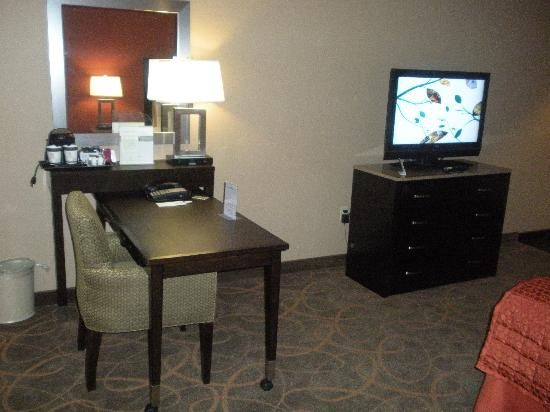 DoubleTree by Hilton Hotel Austin - University Area: Workspace and TV
