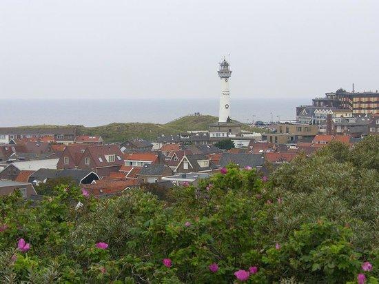 Hotel Zuiderduin : Blick auf den Ort Egmond, den Leuchtturm und die Düne