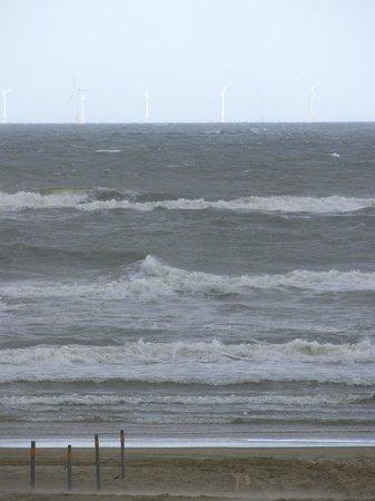 Egmond aan Zee, Niederlande: Selbst im August kann es sehr stürmisch sein