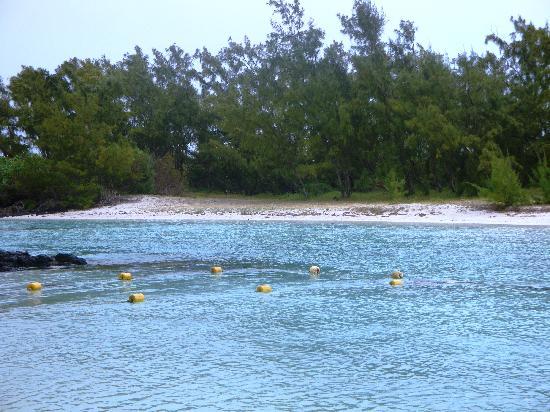 Mauritius: Isola dei Cervi