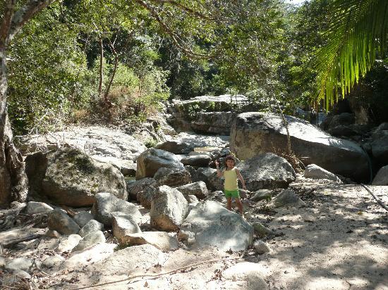 El Eden de Vallarta: Encore la rivière