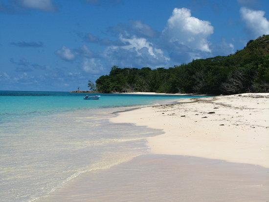 Seychelles,Curiouse island...Anse Josè