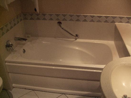 Small bathtub (plastic) - Picture of Southern Sun Waterfront Cape ...