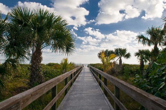 ذا باروت نست: Wakway to Beach