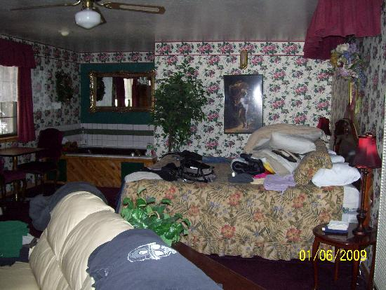 Black Forest Lodge : The room
