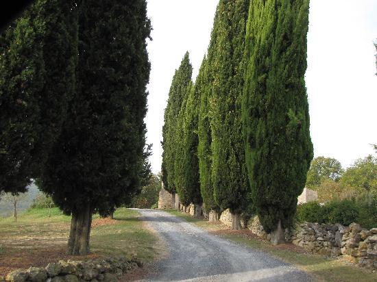 Agriturismo Natura e Salute: front drive