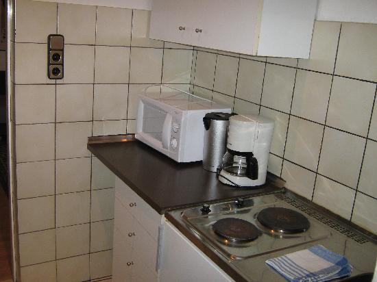 Actilingua Apartment Hotel: Kitchen appliances