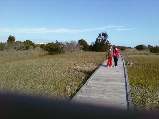 Fort Fisher State Recreation Area: Path 2