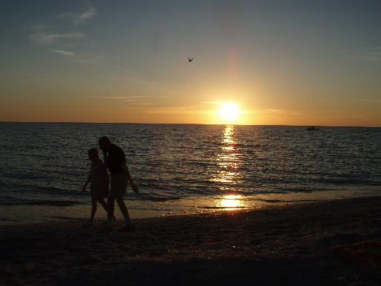 couple walking beach at sunset picture of bowman s beach sanibel