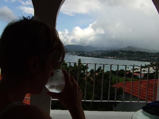 Mount Cinnamon Resort & Beach Club : View from the villa