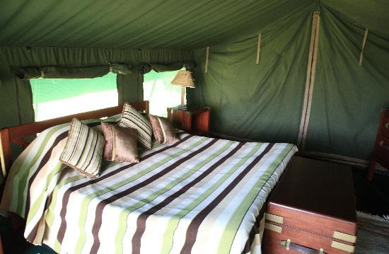 Entim Camp: 室内