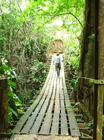 Rio Nuevo Lodge: Bridge to lodge