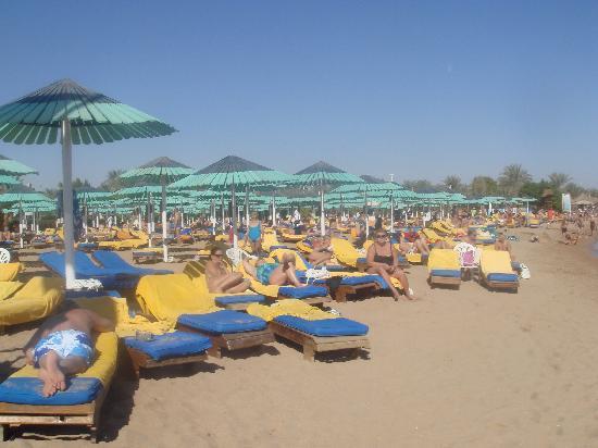 Ghazala Beach Hotel : La plage et ses transats