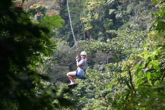This Is The Long Zip Line Picture Of Chukka Caribbean Adventures Montego Bay Tripadvisor