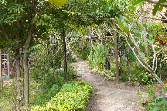 The footpath leading to the cabins
