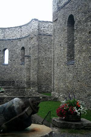 St. Raphael's Ruins: Ruins #14