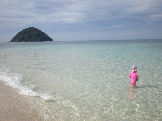 Sea Gypsy Village Resort & Dive Base: Enjoying the beach and crystal waters of Pulau Kukus