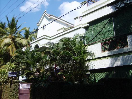 Villa Anamika: It's behind the foliage, honest!