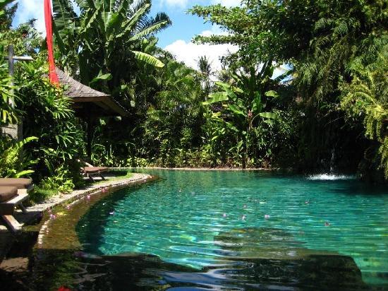 Jamahal Private Resort & SPA : pool