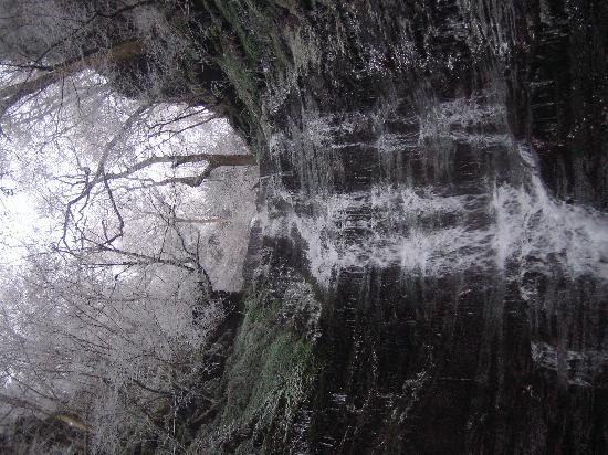 Arboyne House: Beautiful Waterfall close by
