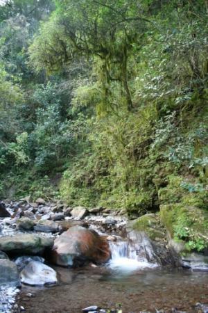Selva Montana: Kleiner Bachlauf hinter dem Hotel
