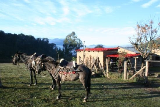 Selva Montana: Baritu