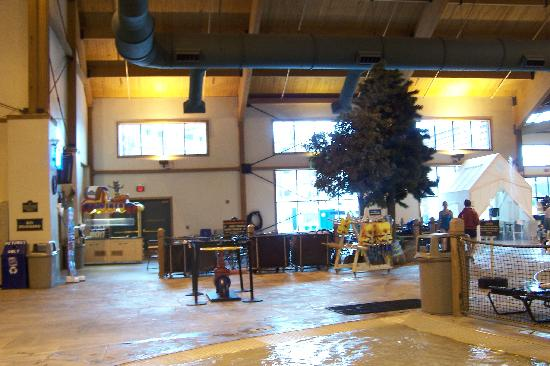 Great Wolf Lodge: snack bar inside pool area $6+ for meals
