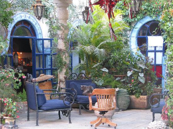 Las Sabilas: the garden guest patio