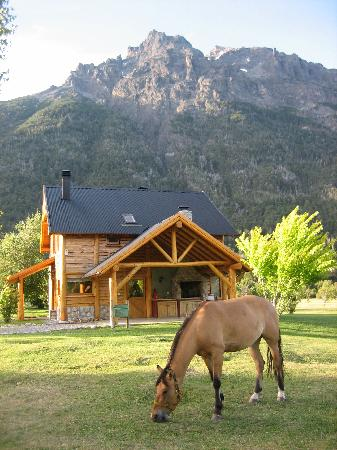 Estancia Peuma Hue : our cabin and one of the friendly horses