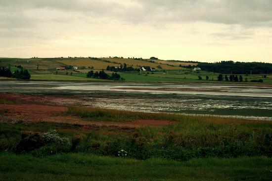Victoria, Canada: Tidal Flat