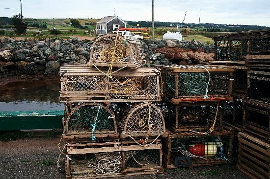 Victoria, Canada: Lobster Traps