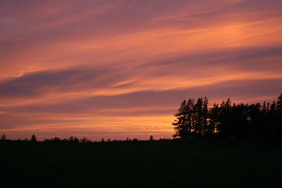 Victoria, Canada: Painted Sky