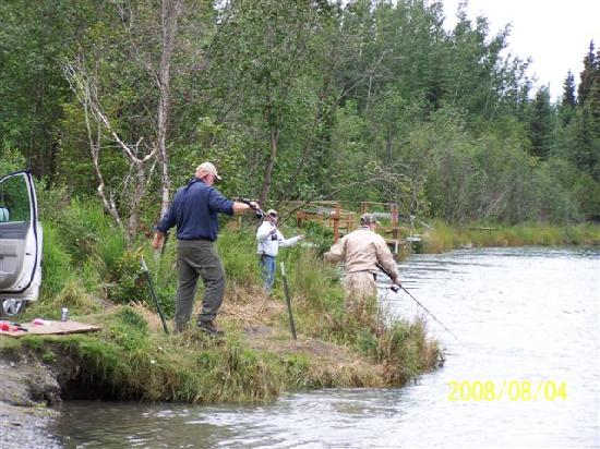 Bank fishing near funny moose lodge picture of alaska for Fishing company of alaska