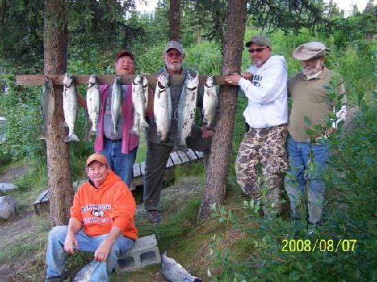 Alaska Funny Moose: Salmon caught off the bank of the Kenai in Soldotna