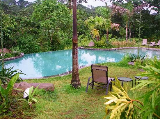 Sarapiquis Rainforest Lodge: Beautiful Pool with a View!