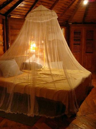 Rockside Cabanas Hotel: Useful mosquito net!