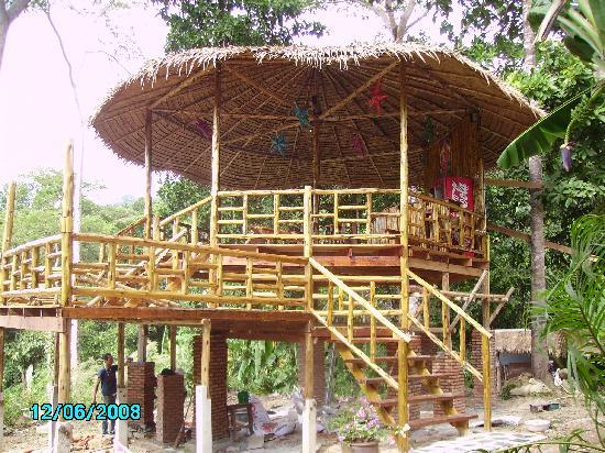 Little Eden Bungalows & Restaurant: The Treehouse under construction