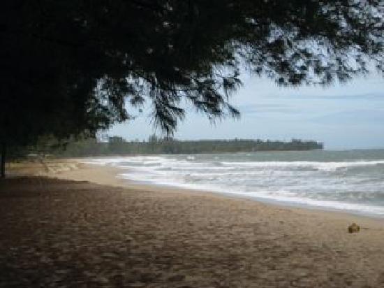 Laem Kum Beach Resort & Seafood: Beach view at Laem Kum