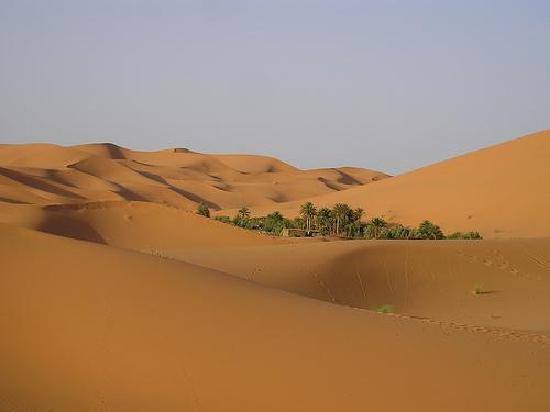 Merzouga, Maroko: oasis