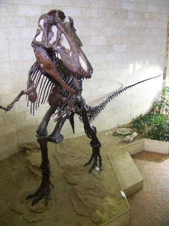 Саскатун, Канада: T-rex