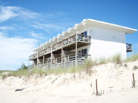 Wavecrest Oceanfront Resort: beach dune outside