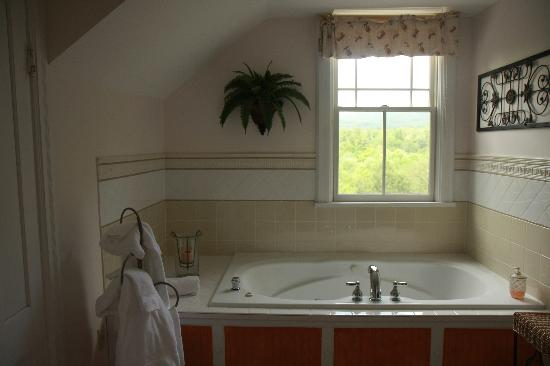 Rosehaven Inn Bed and Breakfast: jacuzzi