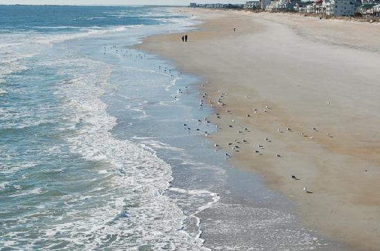 Silver Gull Motel: WRIGHTSVILLE BEACH